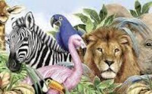 Vilket djur är du?