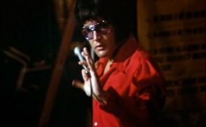 Vad kan du om Elvis?