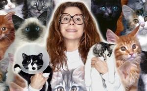 Hur galen i katter är du? Testa dig här!
