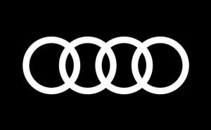 Testa om du är en riktig Audi älskare!