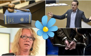 Testa här: Vilken sverigedemokrat hör ihop med vilket brott?