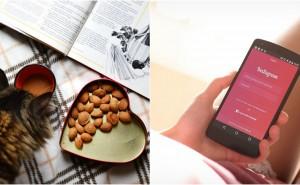 Quiz: Kan vi gissa hur många likes du får på dina bilder på Instagram?