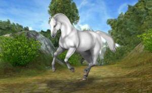 Starstable Quiz