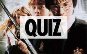 Harry Potter test: vilket elevhem tillhör du?
